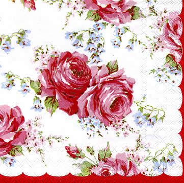 Classic Rose white IHR Rosen